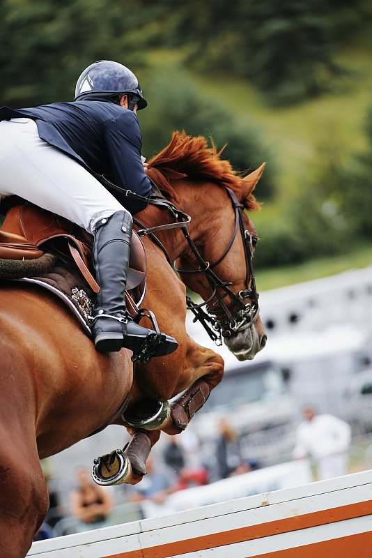 photo concours equestre CSO